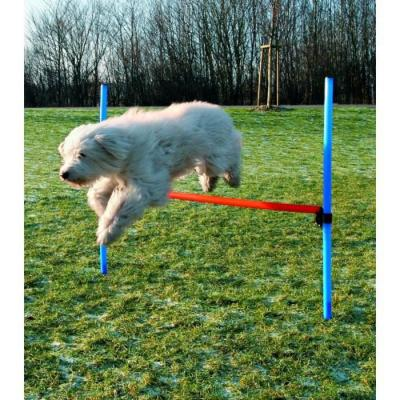 Obstacle Agility Trixie pour chiens